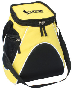 Chronicle Cooler BAg
