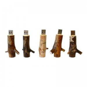usb wood trunks