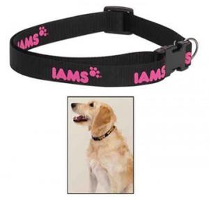 dog collars bongo