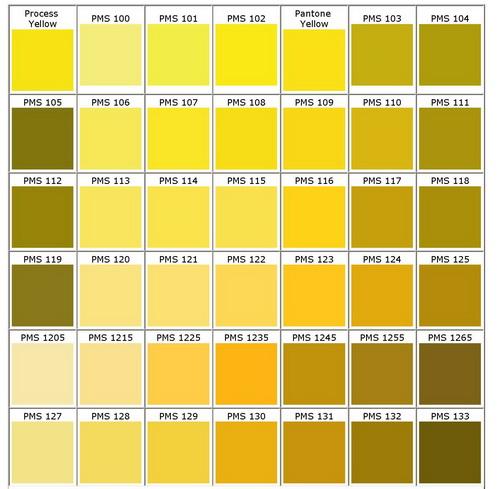 PMS Colour Chart - Bongo