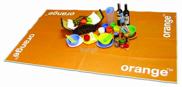 picnic mat bongo
